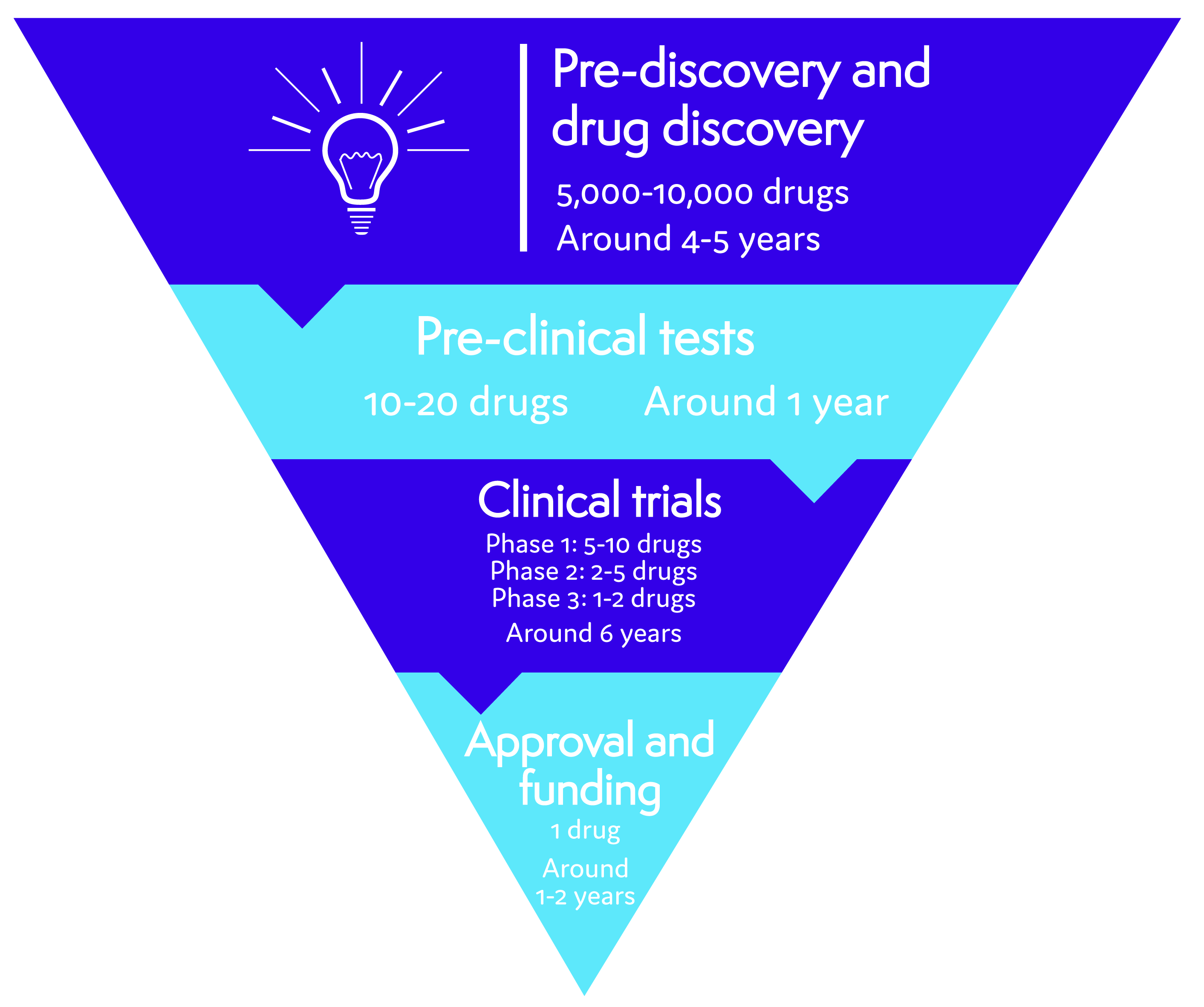 Diagram showing drug discovery, pre-clinical tests, clinical trials and drug approval and funding taking an average of 12 years, and going from thousands of potential drugs down to the one, single drug that is approved