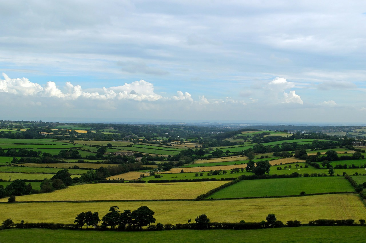 Sweeping open view of North Yorkshire agricultural fields and land