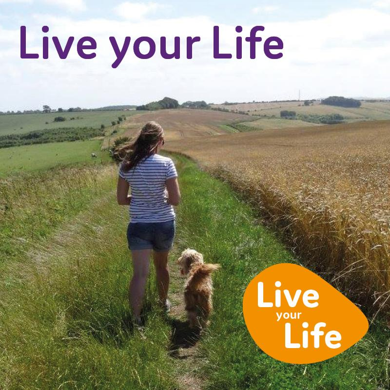 Lady and dog in field. Lead Live your Life image