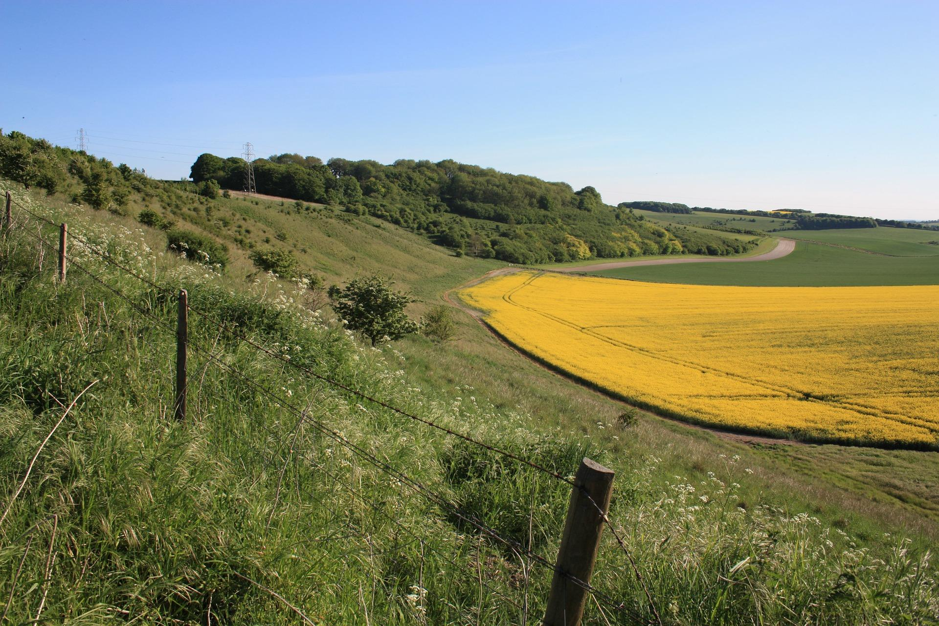 Wiltshire countryside image, large field